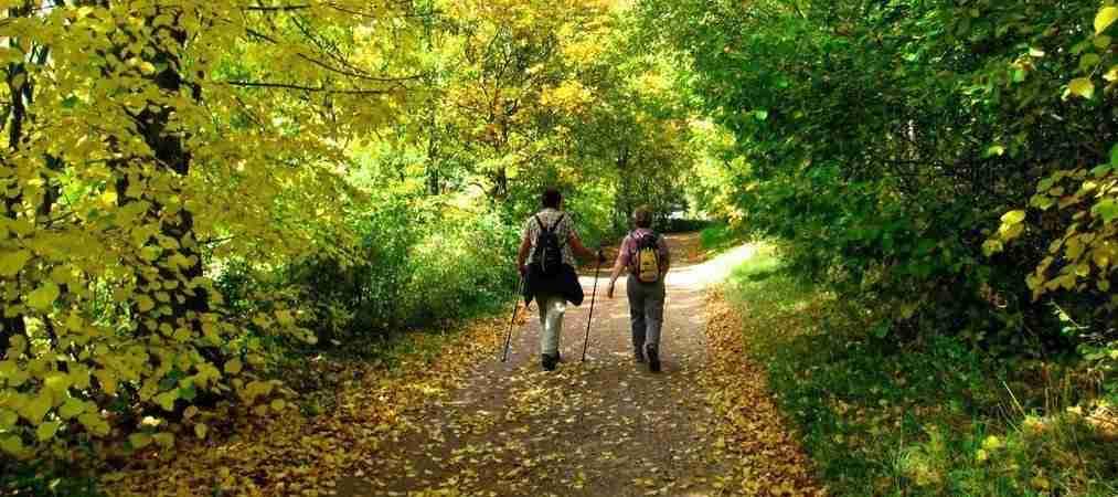 Herbstwandern – ein wahrer Gesundbrunnen